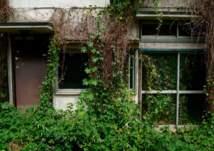 صدق أو لا تصدق.. منازل بالمجان في اليابان (صور)