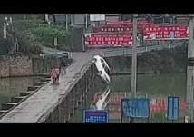 لحظات دراماتيكية لسقوط سيارة في نهر (فيديو)
