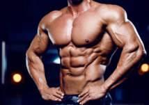 اكتشاف بكتيريا تساعد على نمو العضلات