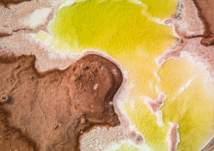 ما قصة البحيرة الصفراء في صحراء أبوظبي؟