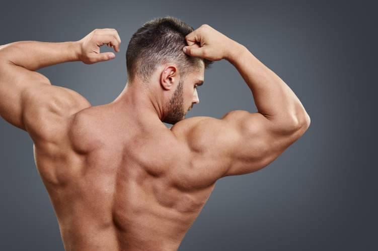 كم عدد عضلات الانسان سيصدمك العدد