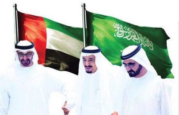 مساواة المستثمر السعودي بالإماراتي