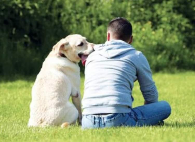 تربية الكلاب أسرع طريقة في العثور على الحب!