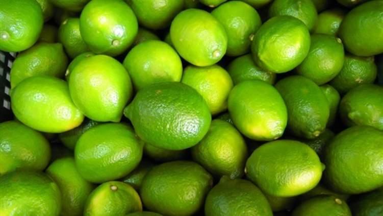 اقتصاد  مفاجأة في أزمة أسعار الليمون المصري