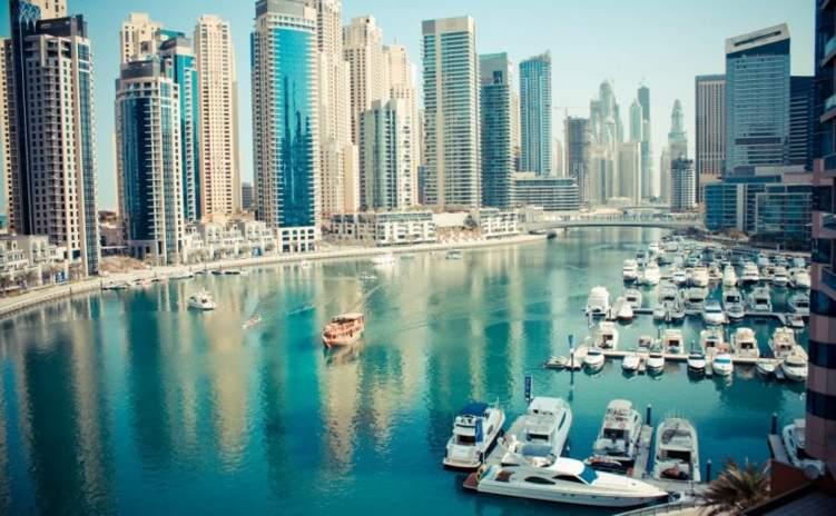 كم عدد الشركات التي يملكها الهنود في دبي؟