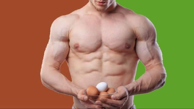 ما فوائد البيض المسلوق لكمال الاجسام؟