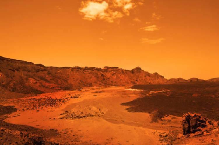 كائنات على الأرض تستطيع العيش على المريخ.. تعرف عليها