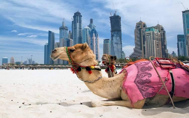 بالأرقام: حجم إنفاق السياح الدوليين داخل السوق الإماراتية