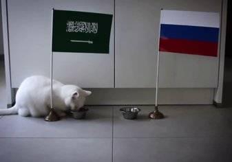 """""""القط"""" و""""البطريق"""" يتوقعان فوز السعودية على روسيا"""