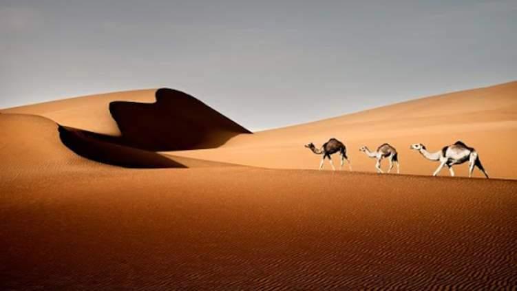 ما وجه الشبه بين صحراء ليوا وكوكب المريخ؟