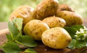 فوائد لا تحصى لقشر البطاطا