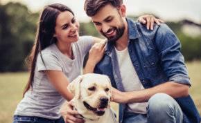 """تطبيق """"مواعدة"""" جديد لمحبي الحيوانات الأليفة"""
