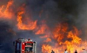 شاهد.. النيران تلتهم المناطق الزراعية في السعودية