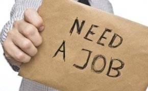 تبحث عن وظيفة؟ كل ما عليك معرفته حول سوق العمل في الإمارات