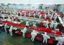 816 مصنعاً قيد الإنشاء في السعودية