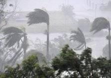 بالأرقام: حصيلة الخسائر البشرية والمادية التي خلفها إعصار مكونو (صور وفيديو)