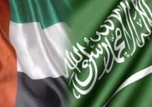 بنسبة 266.9% .. الإمارات تعلن زيادة حجم تجارتها مع السعودية