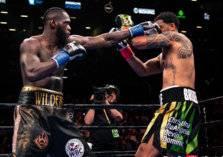 بالفيديو- ملاكم يُسقط منافسه بالضربة القاضية بعد دقيقتين فقط
