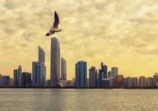 أحصل على رخصة فورية لمزاولة الأعمال حصرياً في أبوظبي