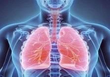 6 نصائح من وزارة الصحة السعودية للوقاية من أمراض الجهاز التنفسي