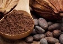 """اليوم العالمي للشوكولاتة """"حقائق غريبة ومؤلمة"""""""