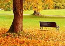 بالصور .. الخريف يُلون أوروبا.