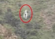 لقطات تحبس الأنفاس.. سقوط سيارة من أعلى قمة جبل في السعودية