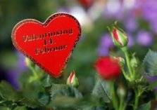 عيد الحب يكلف الأمريكيون مليارات الدولارات