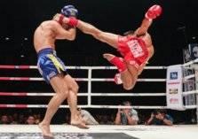 حضروا نزال الملاكمة فأصيبوا بكورونا