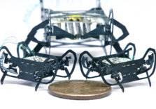 شاهد.. أصغر روبوت في العالم مستوحى من الصرصور