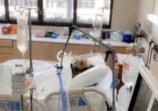 تدهور خطير في حالة تركي آل الشيخ الصحية ونقله إلى أمريكا (فيديو)