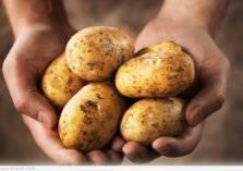 احذر .. علامات تظهر على البطاطا تجعلها سامة!