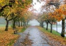 وجهات سياحية ينصح بزيارتها في فصل الخريف (صور)
