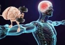 """كيف تستعيد """" ذاكرتك العضلية"""" بالتمارين؟"""